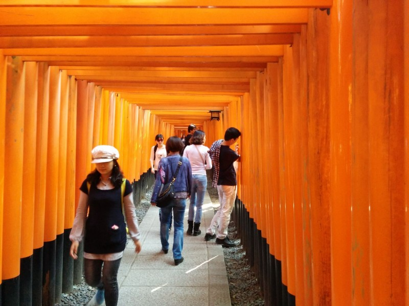 Einige wenige Torii beim Fushimi Inari-Taisha.
